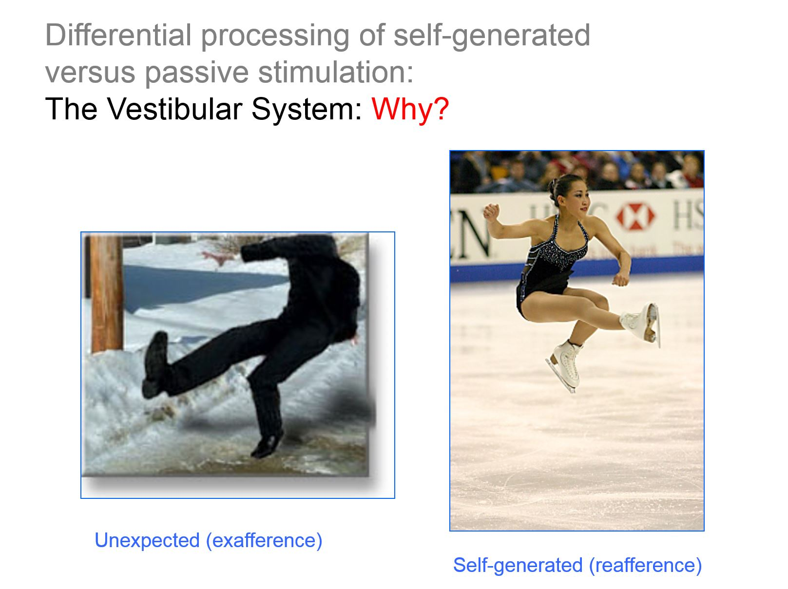 Self-generated versus passive stimulation