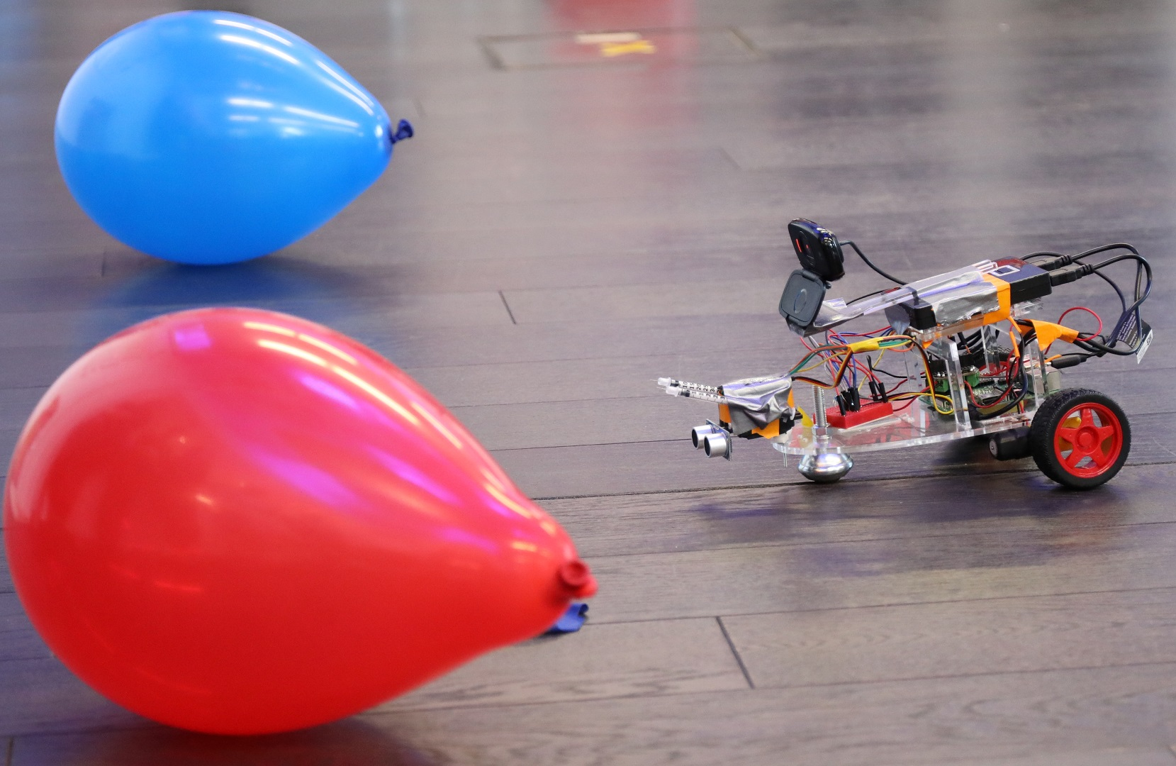 Photo of a simple robot, built by SWC students, hesitating between two balloons of different color